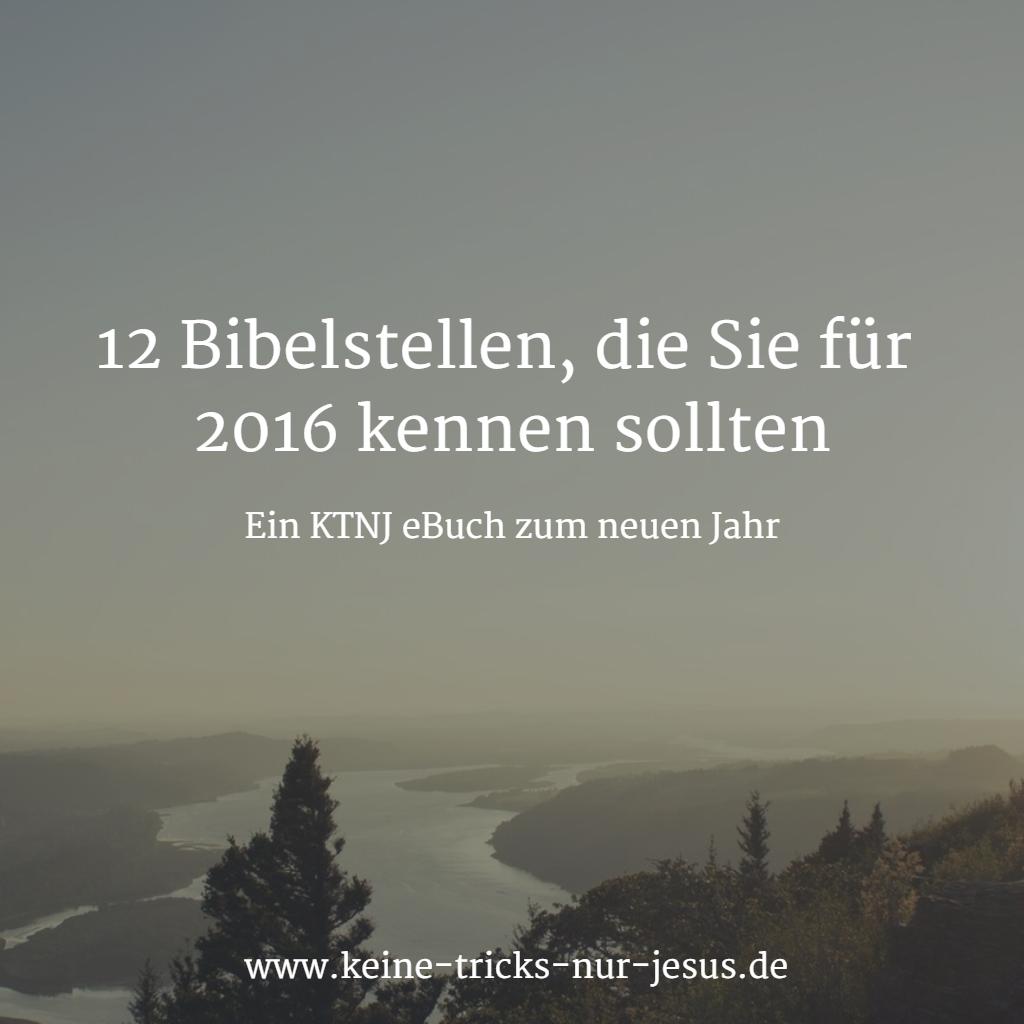 WhatsApp 12 Bibelstellen eBuch