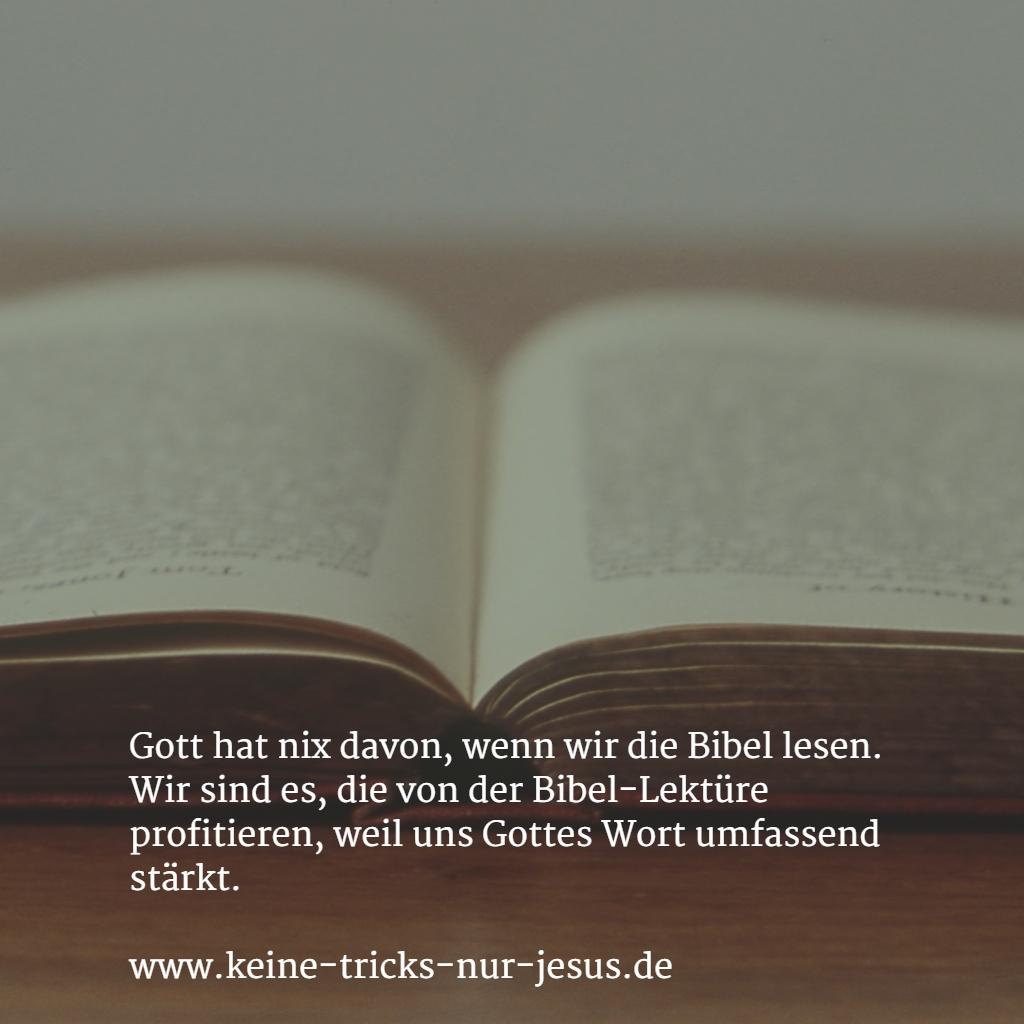 bibel-lektuere-hilft-uns
