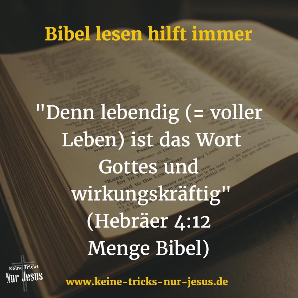 Warum in der Bibel lesen?