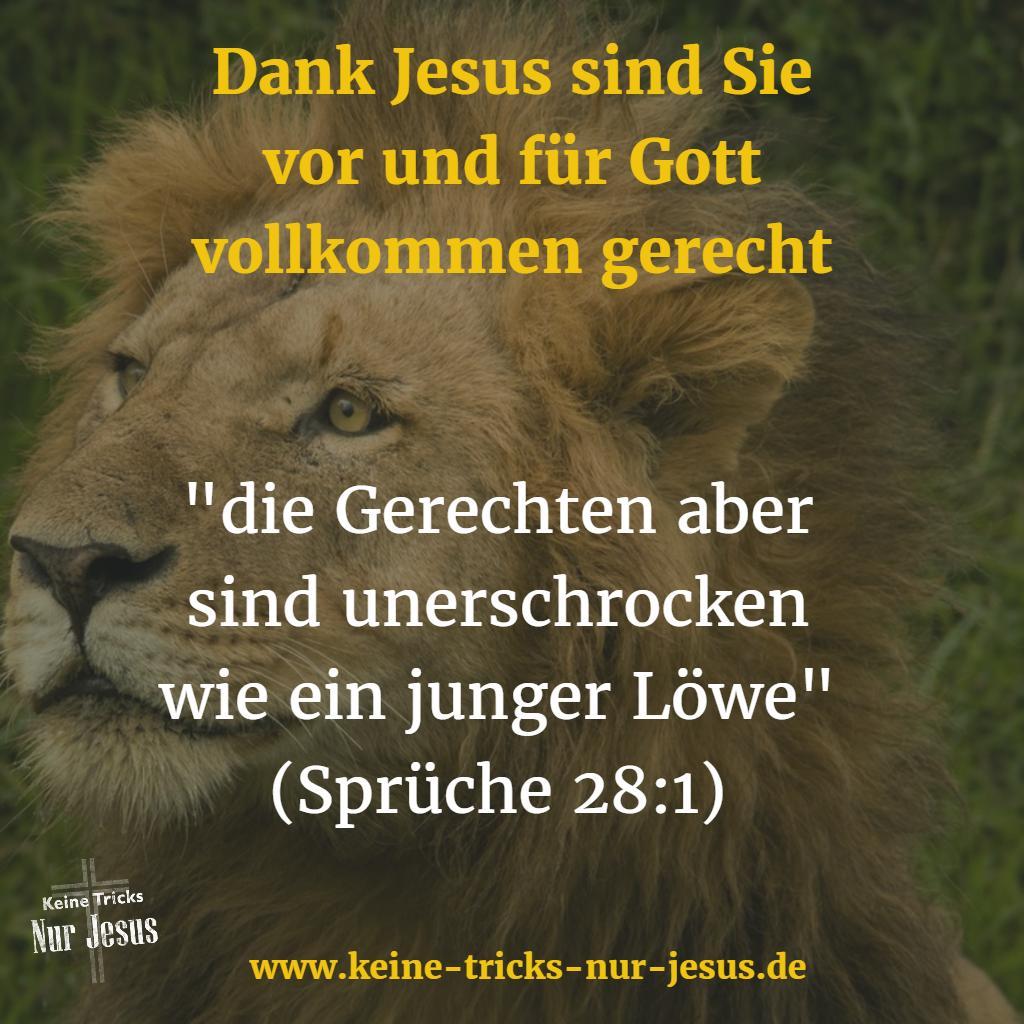 Stark Und Unerschrocken Durch Jesus Das Können Sie Als
