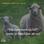 """Die Antwort auf die Angst: """"Fürchtet euch nicht!"""" (Jesus in Matthäus 28:10)"""