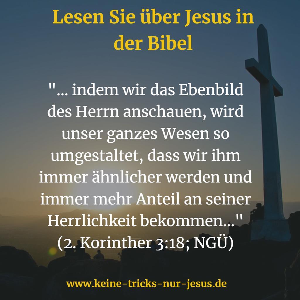 Wie Jesus werden