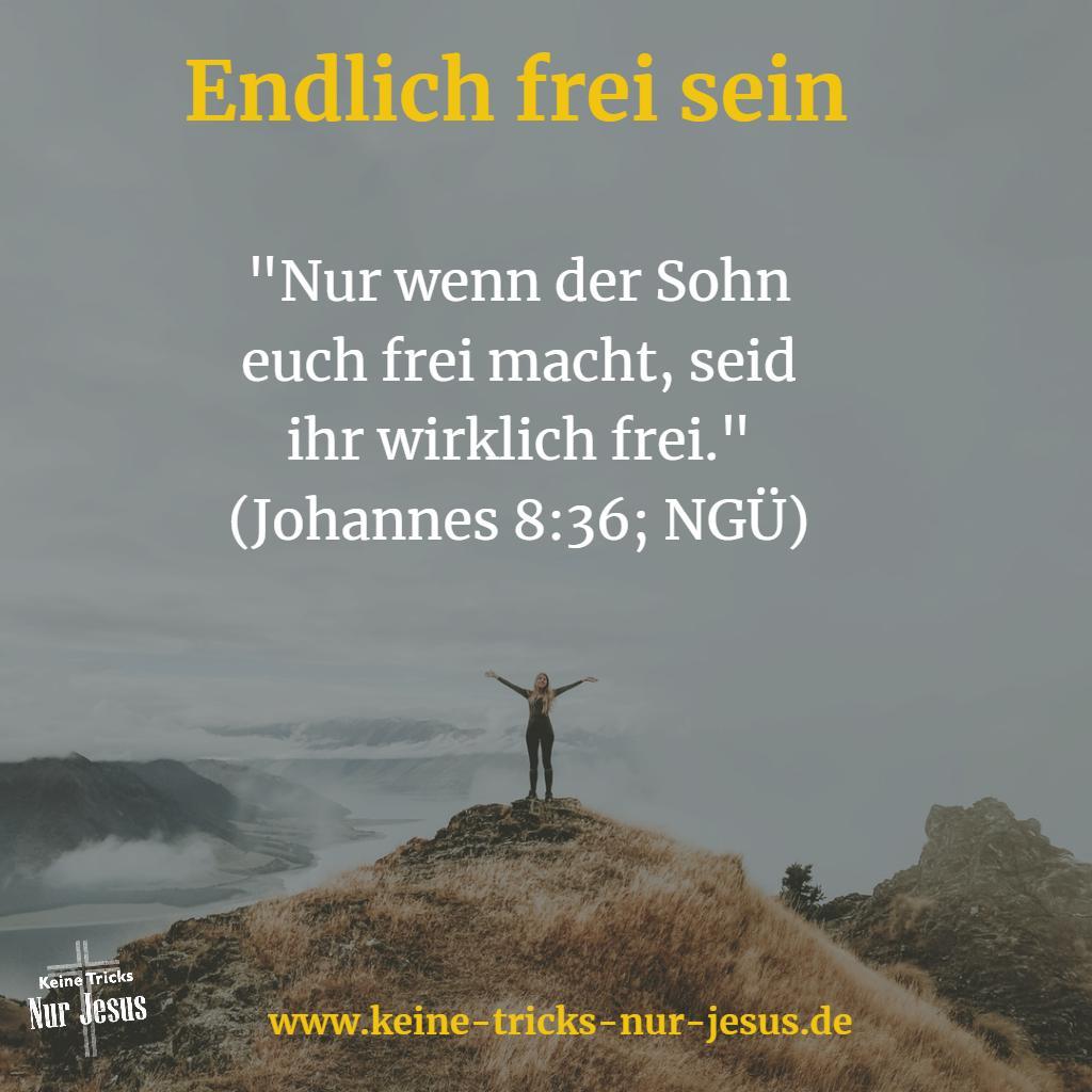 Christlicher Glaube heißt Freiheit