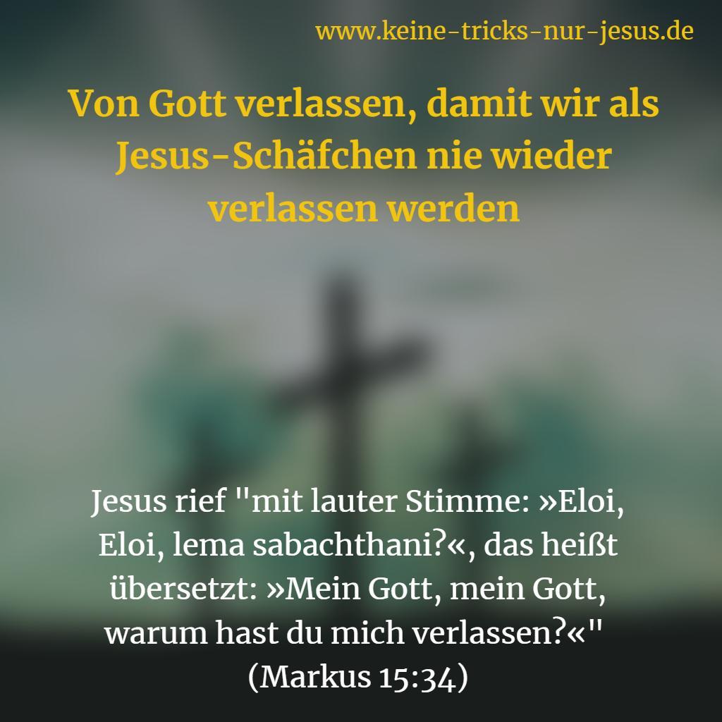 Die letzten Augenblicke des irdischen Lebens von Jesus. Eloi, Eloi, lema sabachthani?