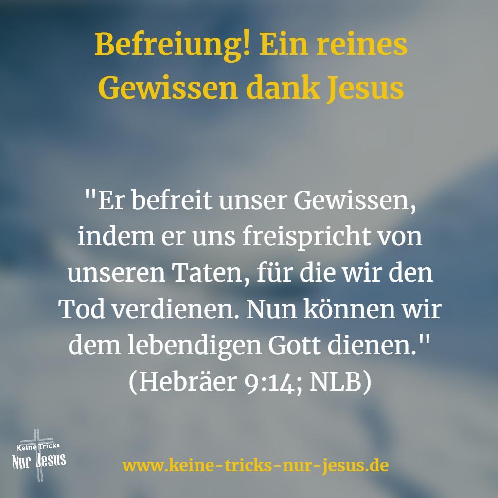 Ein reines Gewissen dank Jesus. Wir werden nicht mehr bestraft
