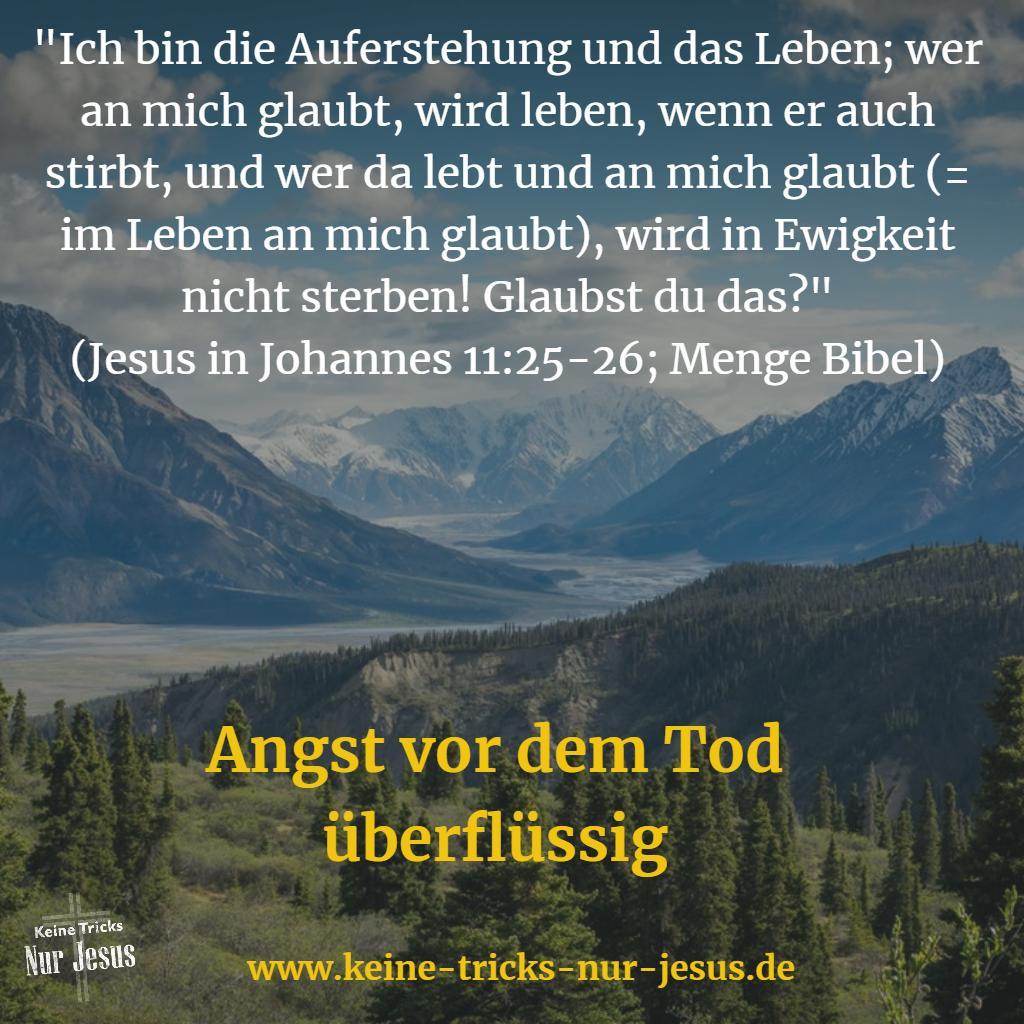 Leben Nach Dem Tod Bibel