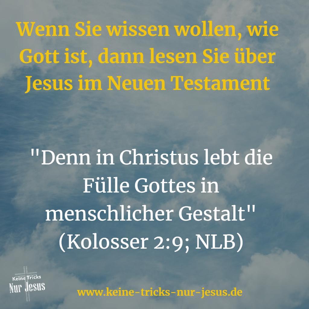 Die Fülle Gottes in Jesus