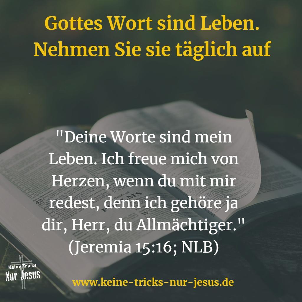 Gottes Worte sind Leben. Nehmen Sie sie auf. Täglich