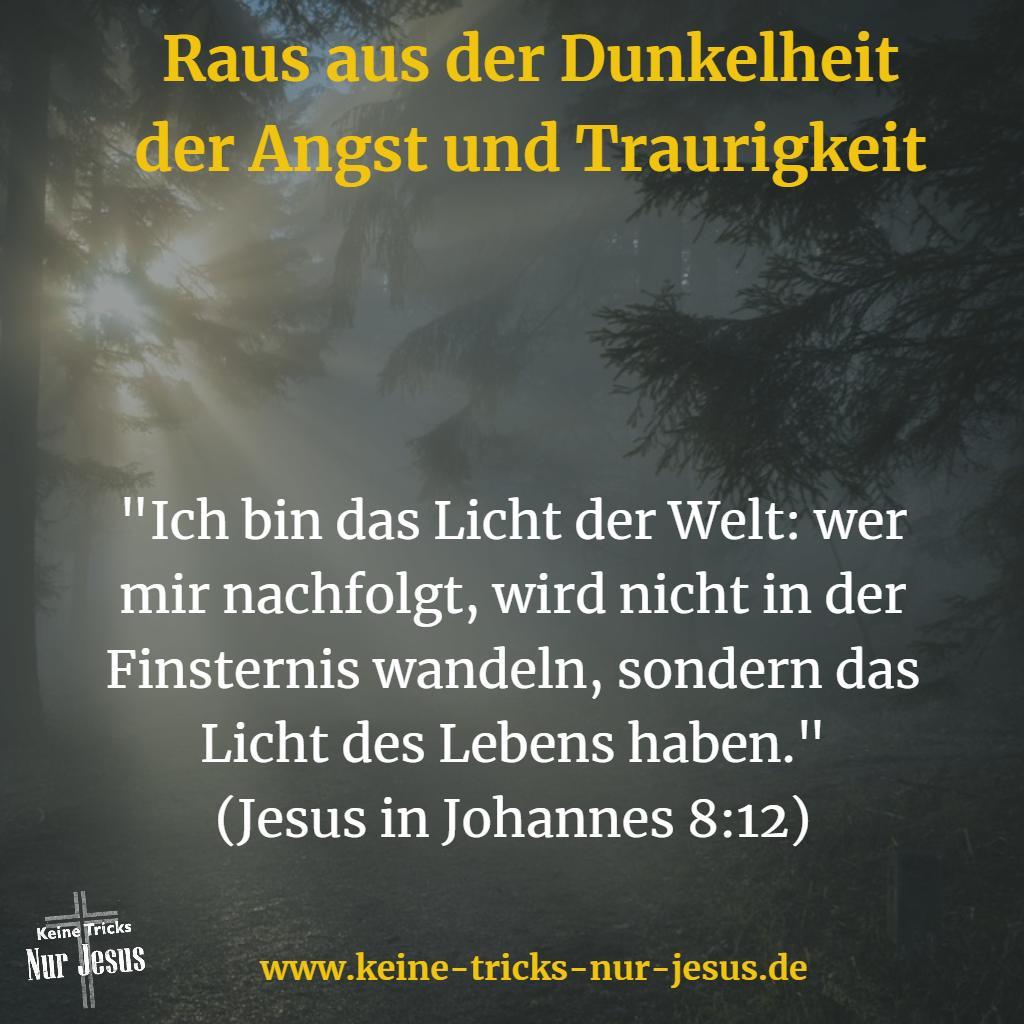 Licht der Welt: Jesus