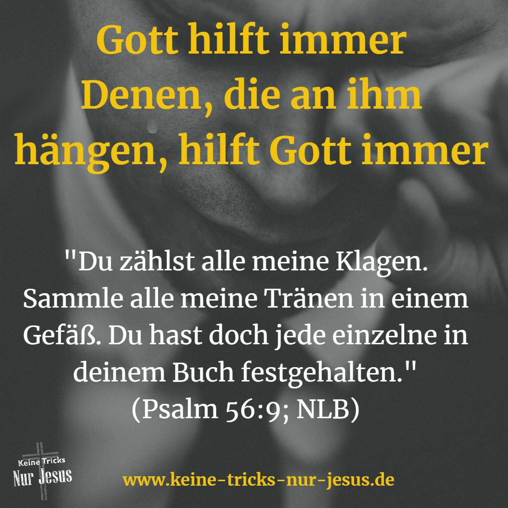 Tränen gesammelt Psalm 56