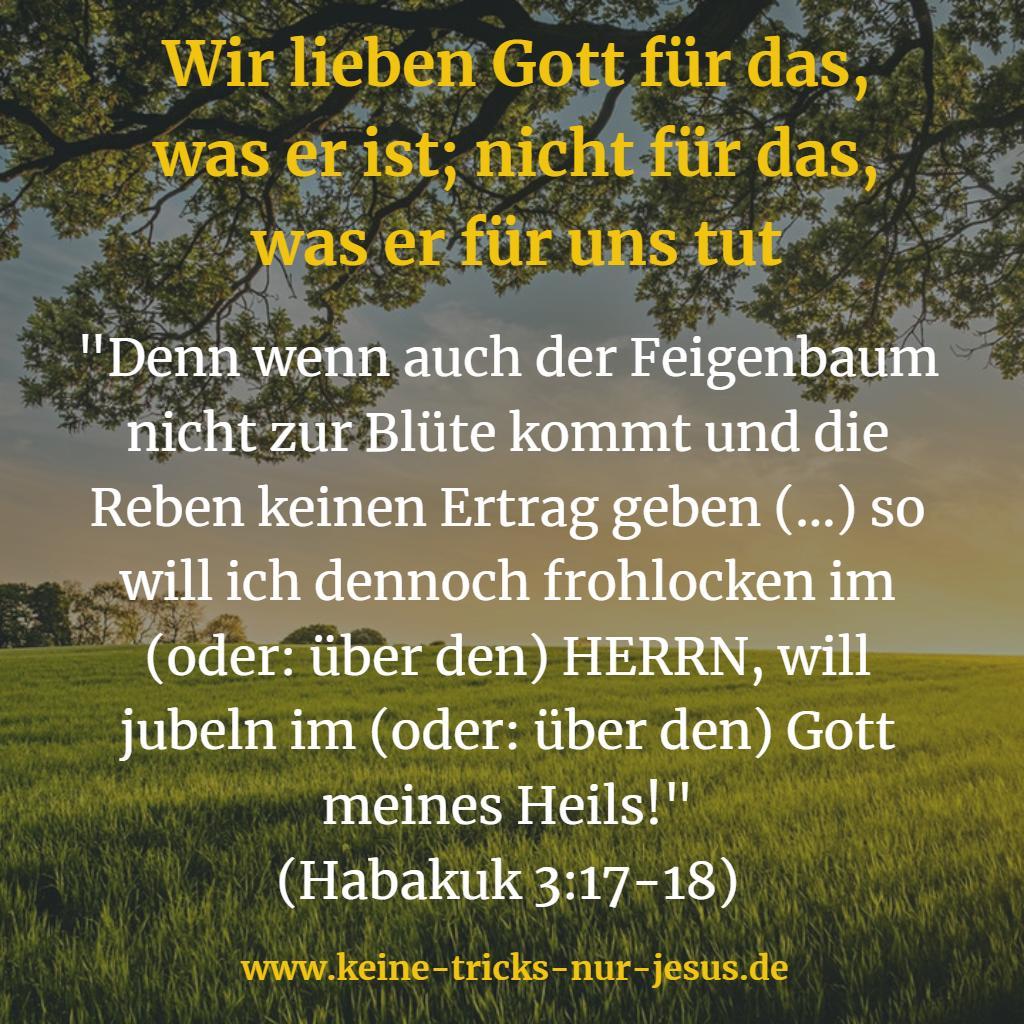 Jubel über Gott