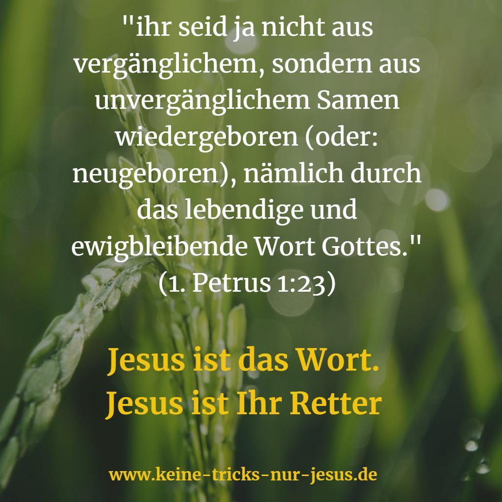 Jesus ist das Wort