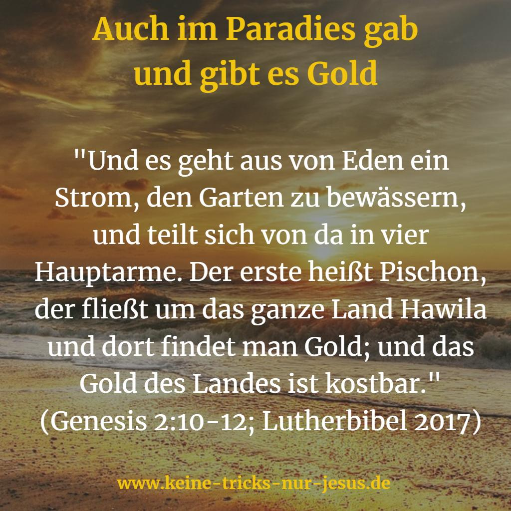Gold im Paradies