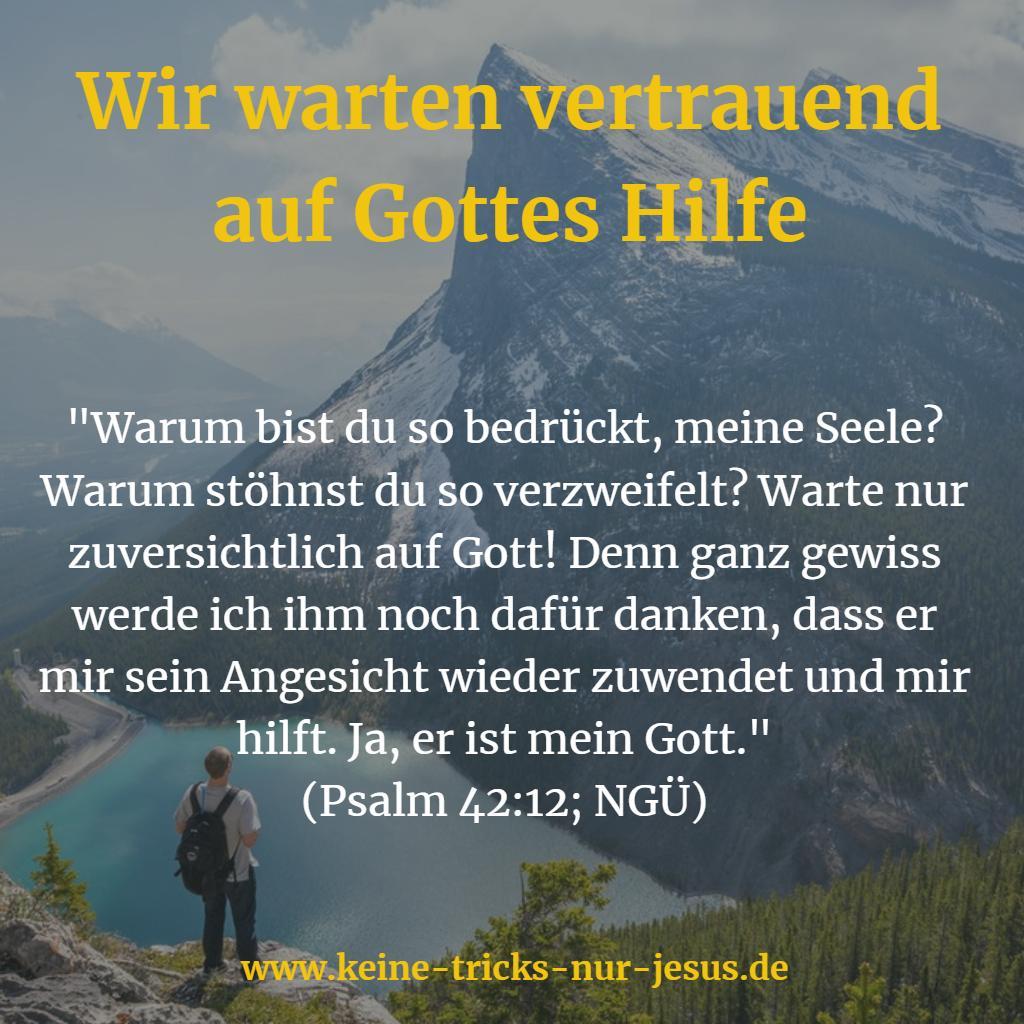 Harre auf Gott