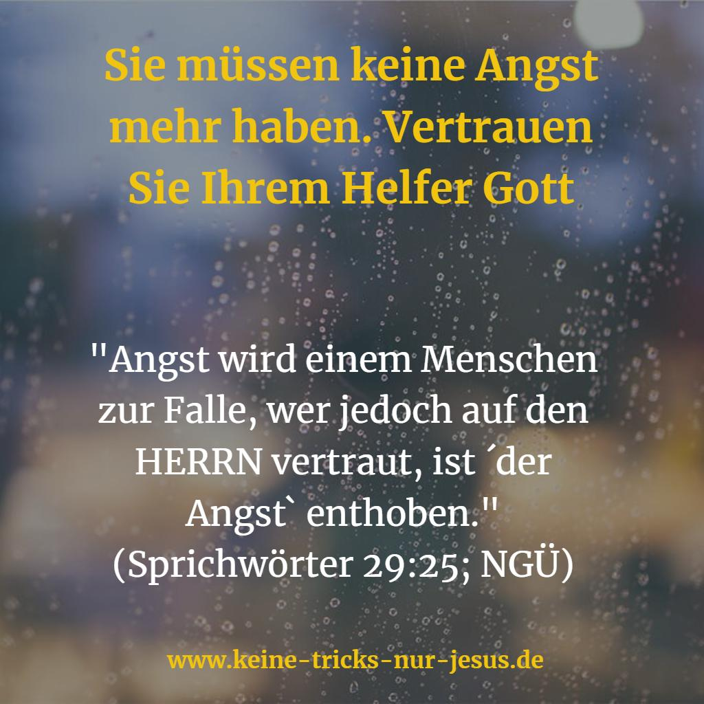 Sprüche 29,25