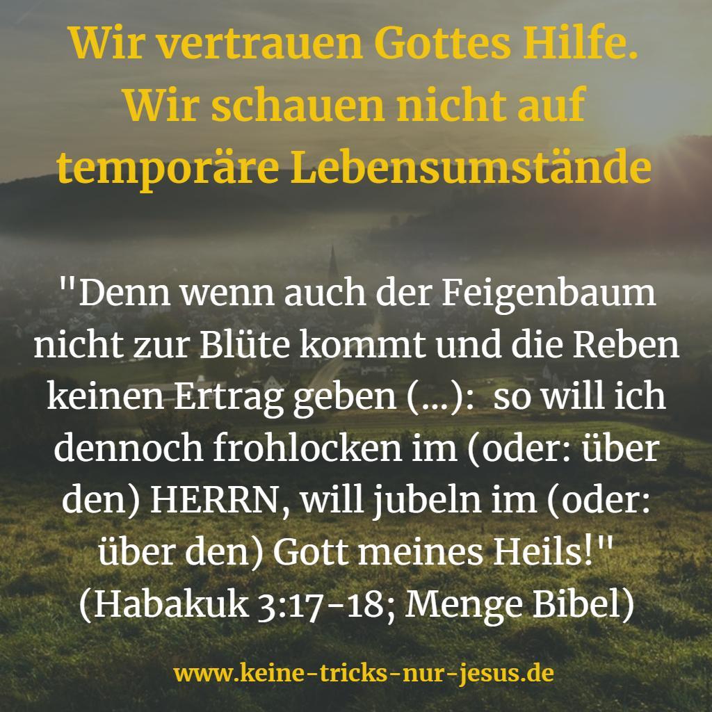 Feigenbaum Bibel