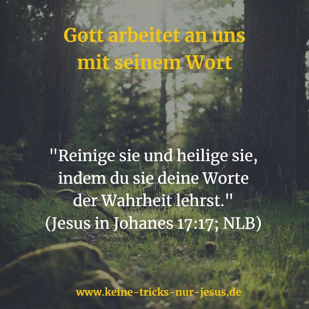 Erziehung von Gott