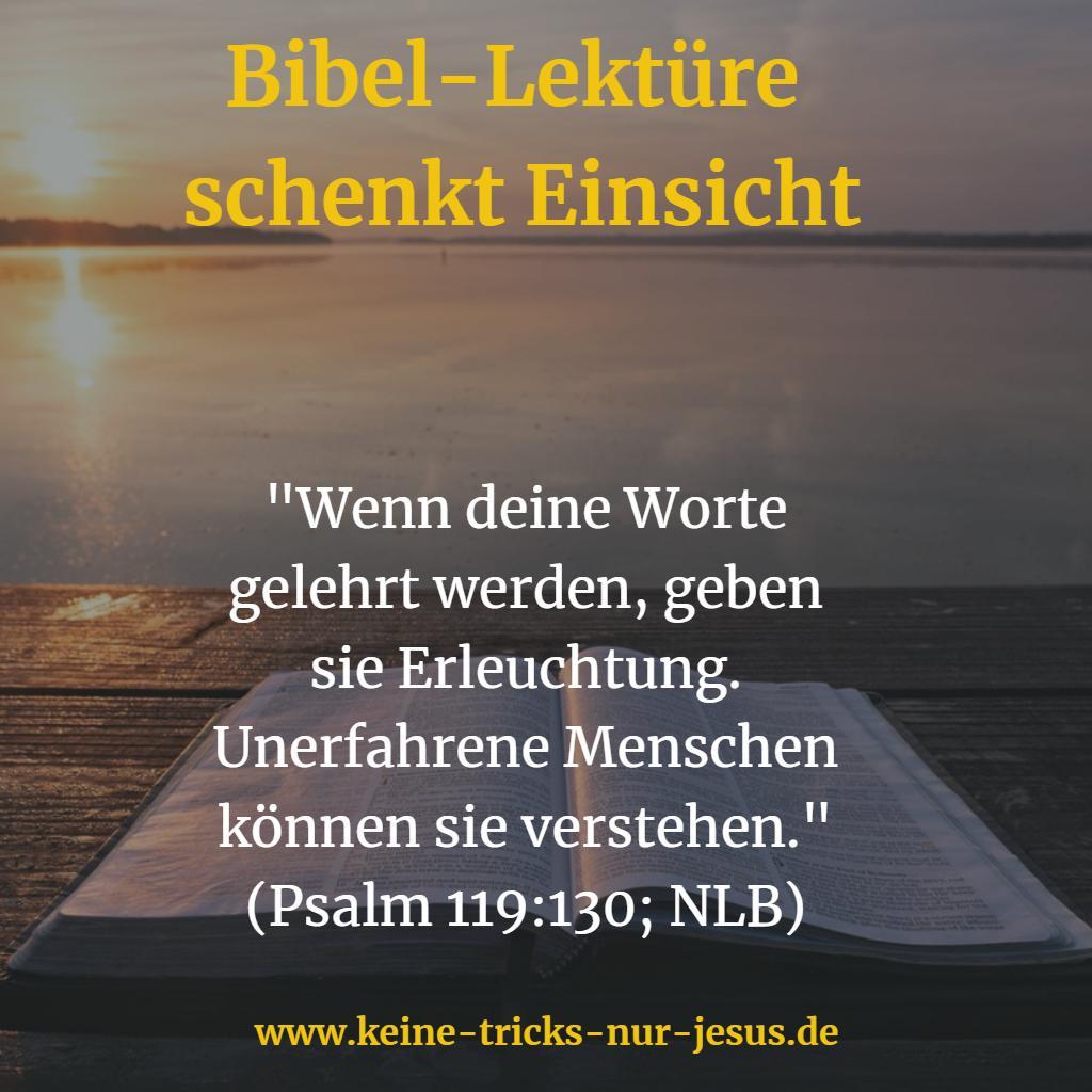 Bibel-Lektüre