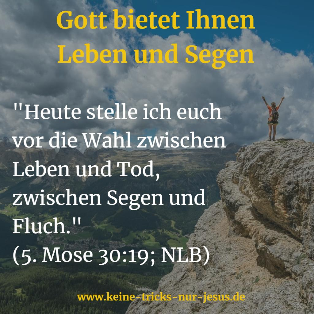 Leben und Segen von Gott