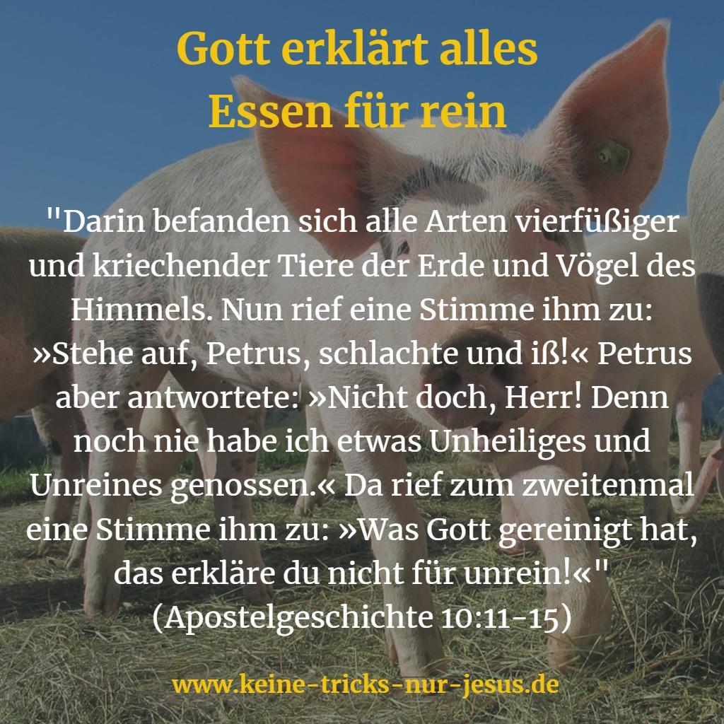 Schweinefleisch essen