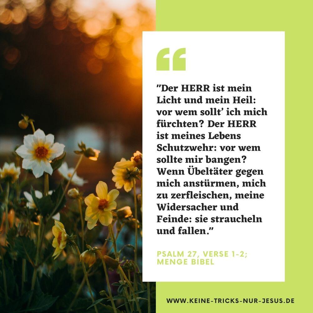 Psalm 27:1-2 - Gottes Schutz